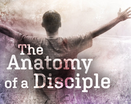 The Anatomy of a Disciple