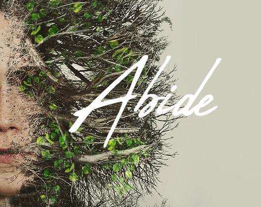 Abide_web